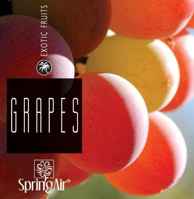 SPRING AIR NÁPLŇ PRE ICONOSCENT/ARTYSCENT GRAPE 500ml
